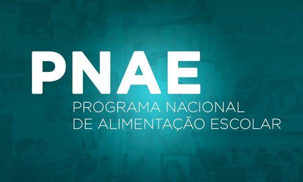 FNDE realiza pesquisa com gestores educacionais sobre execução do PNAE durante a pandemia de Covid-19